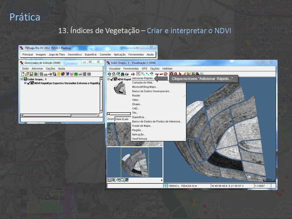 Prática 13. Índices de Vegetação – Criar e interpretar o NDVI Clique no ícone Adicionar Rápido...