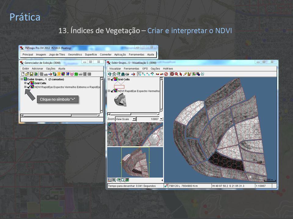 Prática 13. Índices de Vegetação – Criar e interpretar o NDVI Clique no símbolo +