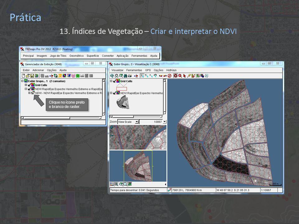 Prática 13. Índices de Vegetação – Criar e interpretar o NDVI Clique no ícone preto e branco de raster.