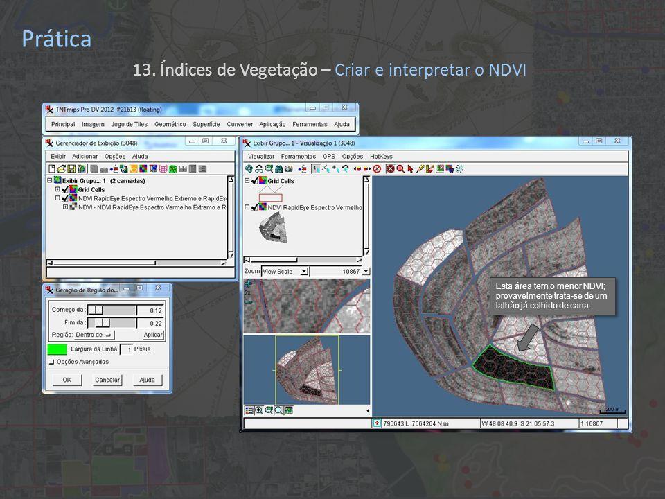 Prática 13. Índices de Vegetação – Criar e interpretar o NDVI Esta área tem o menor NDVI; provavelmente trata-se de um talhão já colhido de cana.