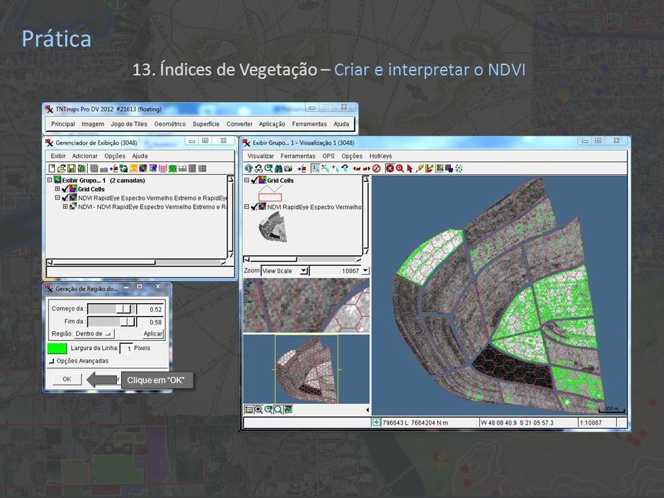 Prática 13. Índices de Vegetação – Criar e interpretar o NDVI Clique em OK