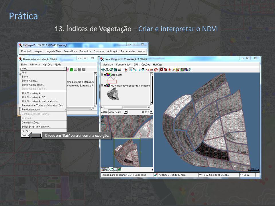 Prática 13. Índices de Vegetação – Criar e interpretar o NDVI Clique em Sair para encerrar a exibição.