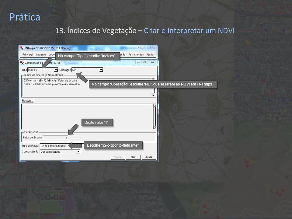 Prática 13. Índices de Vegetação – Criar e interpretar um NDVI No campo Tipo, escolhe Índices No campo Operação, escolhe ND, que se refere ao NDVI em