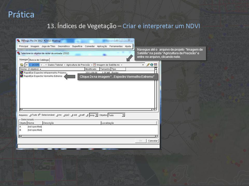 Prática 13. Índices de Vegetação – Criar e interpretar um NDVI Clique 2x na imagem...Espectro Vermelho Extremo Navegue até o arquivo de projeto Imagem