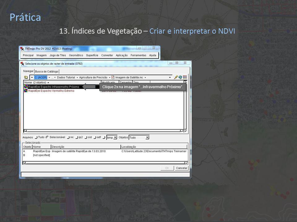 Prática 13. Índices de Vegetação – Criar e interpretar o NDVI Clique 2x na imagem...Infravermelho Próximo.