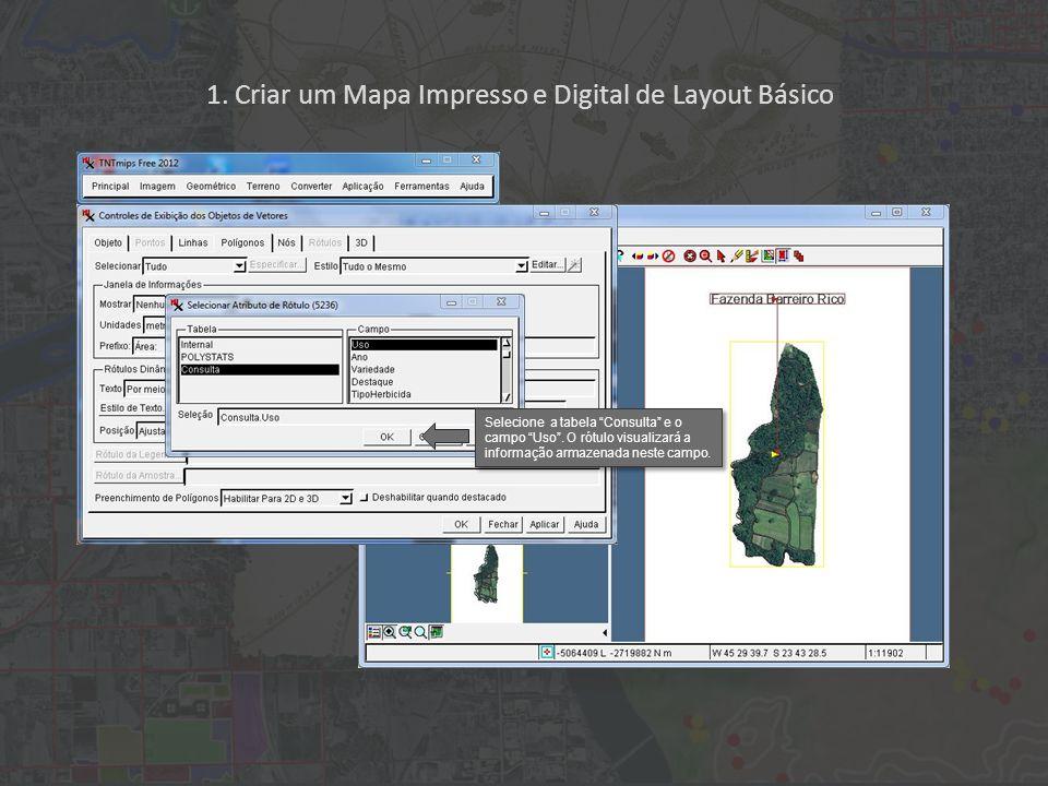 1. Criar um Mapa Impresso e Digital de Layout Básico Selecione a tabela Consulta e o campo Uso. O rótulo visualizará a informação armazenada neste cam
