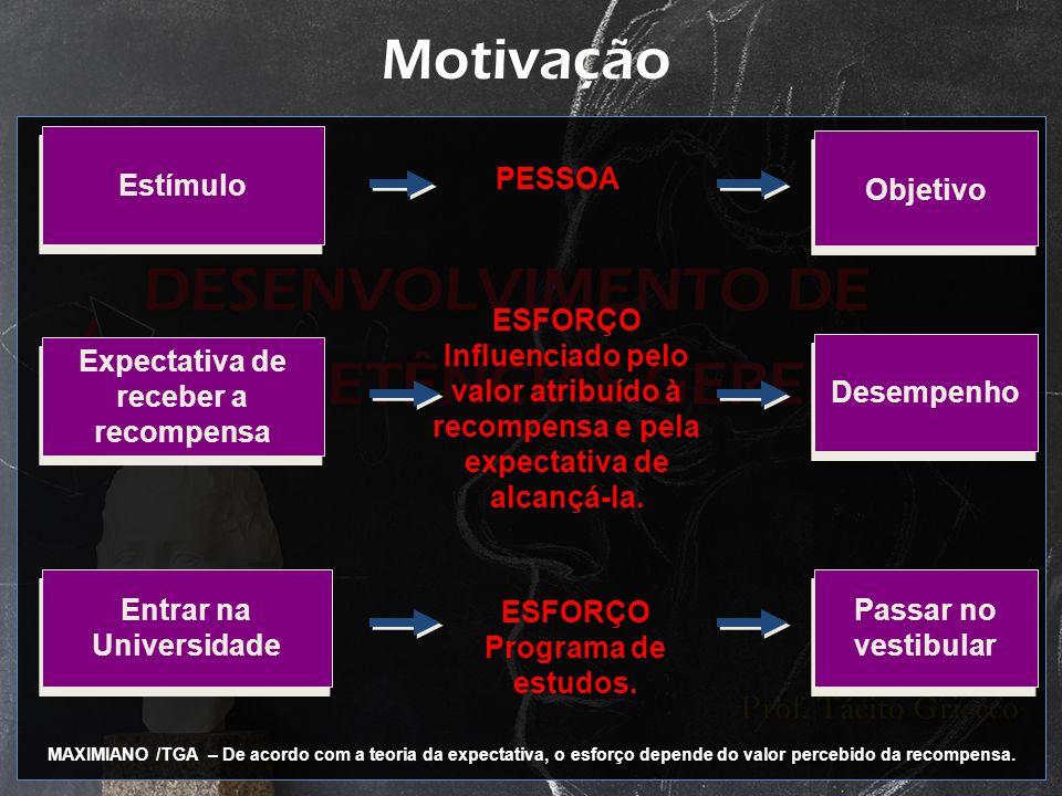 Motivação Estímulo PESSOA Objetivo Expectativa de receber a recompensa ESFORÇO Influenciado pelo valor atribuído à recompensa e pela expectativa de al