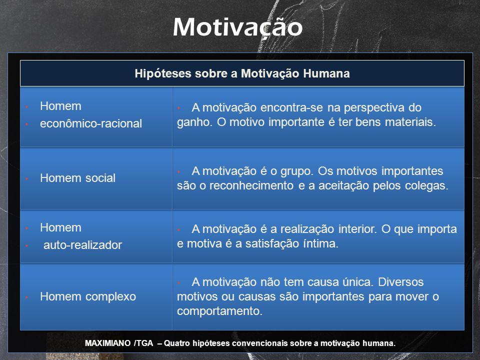 Motivação A motivação não tem causa única. Diversos motivos ou causas são importantes para mover o comportamento. A motivação é a realização interior.