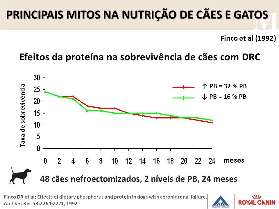 PRINCIPAIS MITOS NA NUTRIÇÃO DE CÃES E GATOS Efeitos da proteína na sobrevivência de cães com DRC Finco et al (1992) Finco DR et al: Effects of dietar