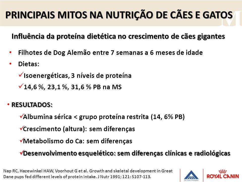 Filhotes de Dog Alemão entre 7 semanas a 6 meses de idade Dietas: Isoenergéticas, 3 níveis de proteína 14,6 %, 23,1 %, 31,6 % PB na MS Influência da p
