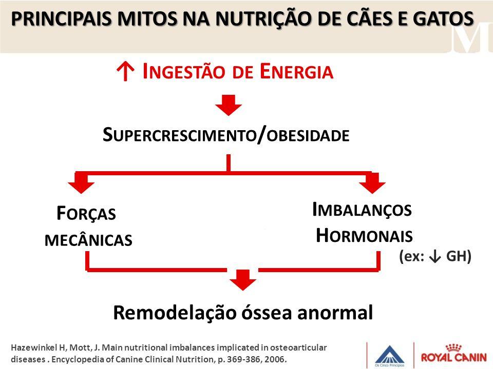 I MBALANÇOS H ORMONAIS F ORÇAS MECÂNICAS Remodelação óssea anormal (ex: GH) S UPERCRESCIMENTO / OBESIDADE PRINCIPAIS MITOS NA NUTRIÇÃO DE CÃES E GATOS