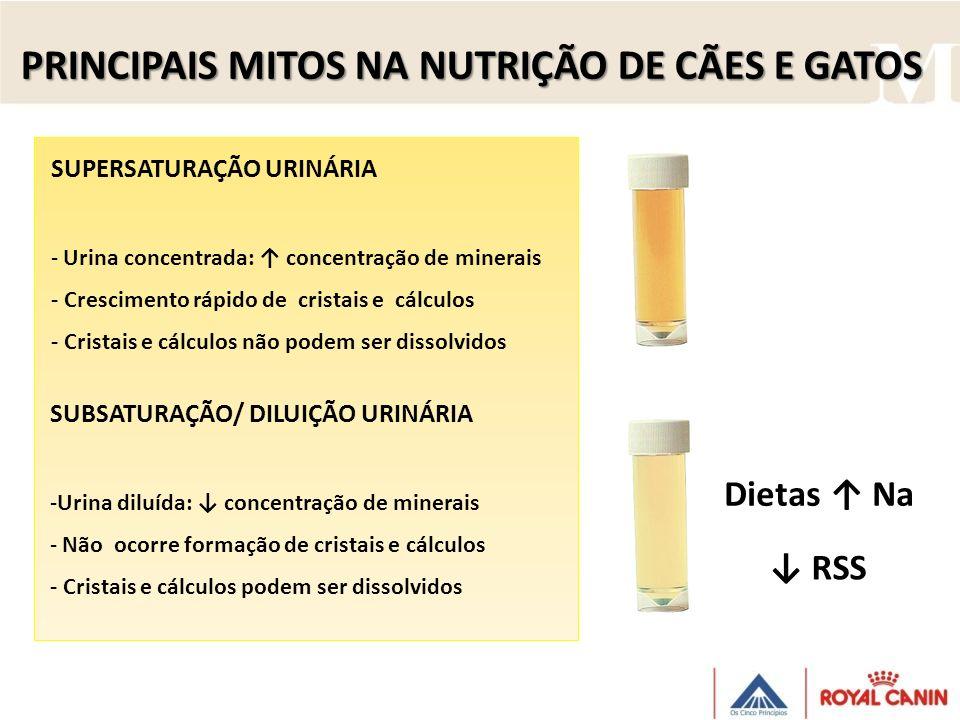 SUBSATURAÇÃO/ DILUIÇÃO URINÁRIA -Urina diluída: concentração de minerais - Não ocorre formação de cristais e cálculos - Cristais e cálculos podem ser