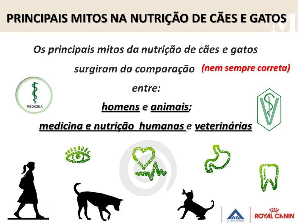 PRINCIPAIS MITOS NA NUTRIÇÃO DE CÃES E GATOS Os principais mitos da nutrição de cães e gatos surgiram da comparação entre: homens eanimais homens e an
