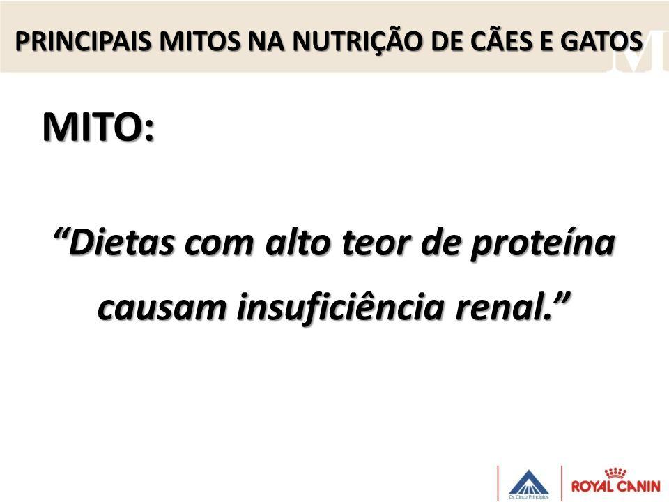 Dietas com alto teor de proteína causam insuficiência renal. MITO: PRINCIPAIS MITOS NA NUTRIÇÃO DE CÃES E GATOS