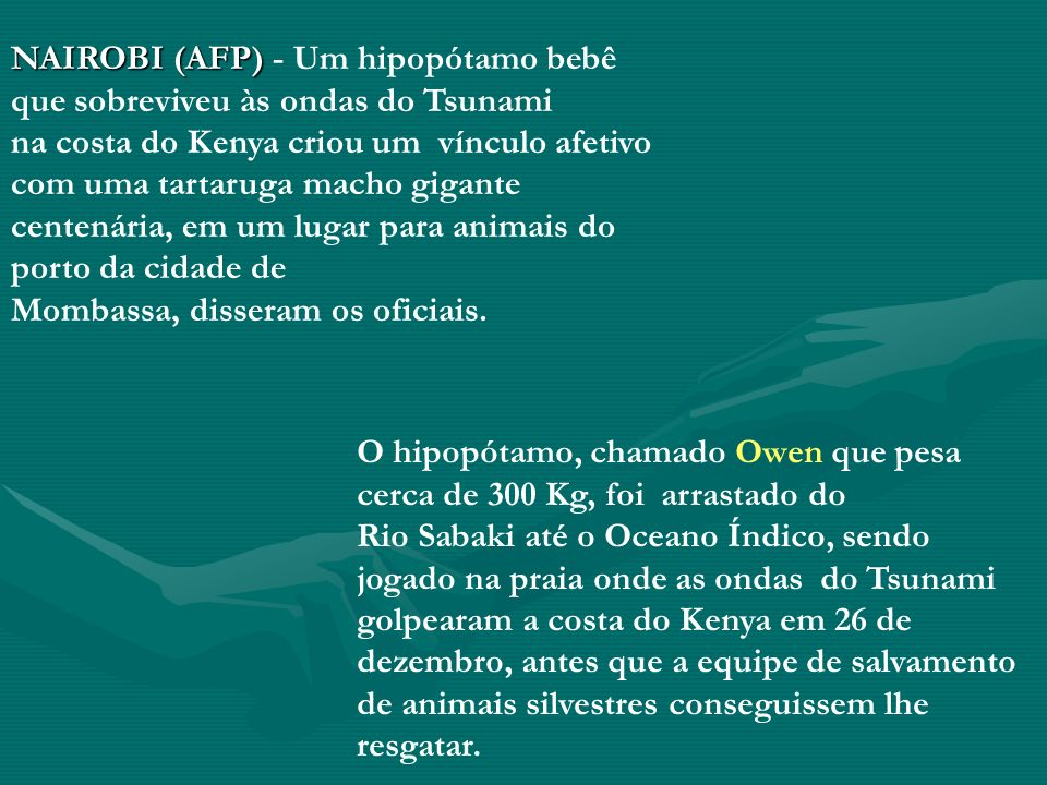 NAIROBI (AFP) NAIROBI (AFP) - Um hipopótamo bebê que sobreviveu às ondas do Tsunami na costa do Kenya criou um vínculo afetivo com uma tartaruga macho gigante centenária, em um lugar para animais do porto da cidade de Mombassa, disseram os oficiais.
