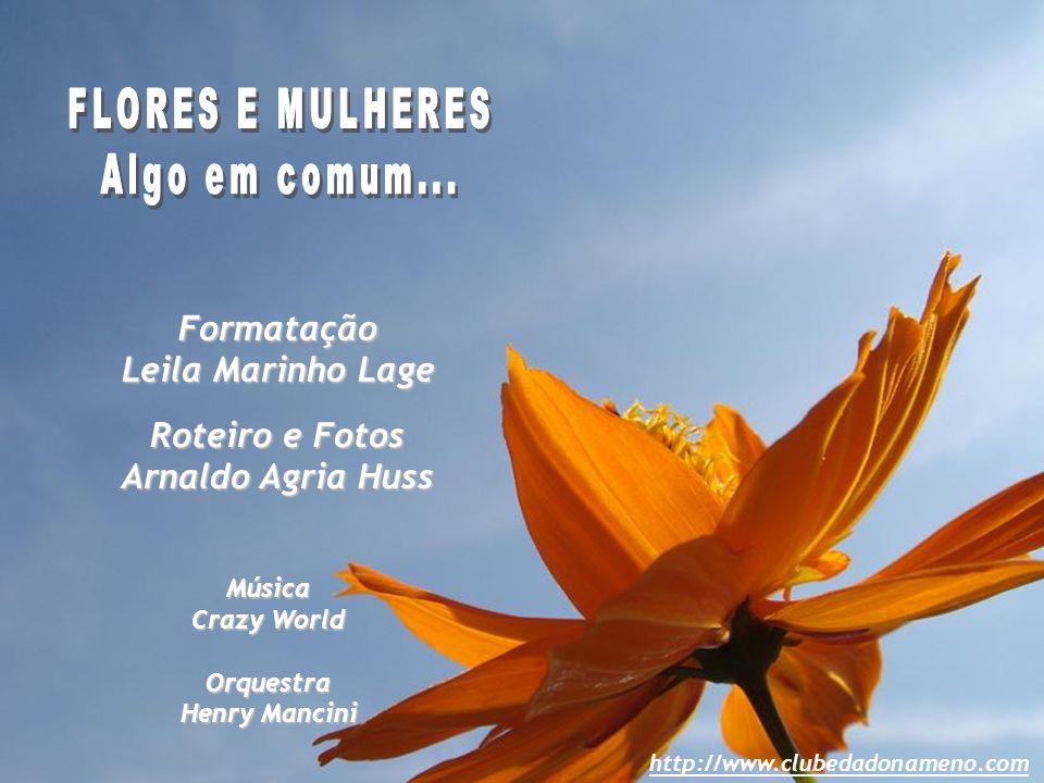 Formatação Leila Marinho Lage Roteiro e Fotos Arnaldo Agria Huss Música Crazy World Orquestra Henry Mancini http://www.clubedadonameno.com