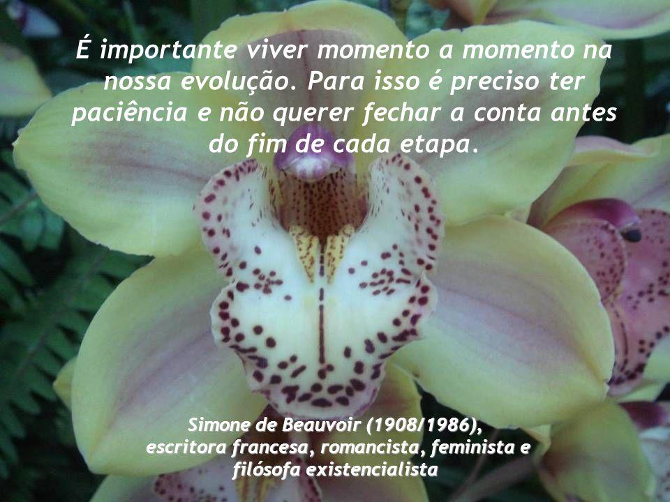 Mude, mas comece devagar, porque a direção é mais importante que a velocidade. Clarice Lispector (1920 /1977), escritora brasileira, nascida na Ucrâni