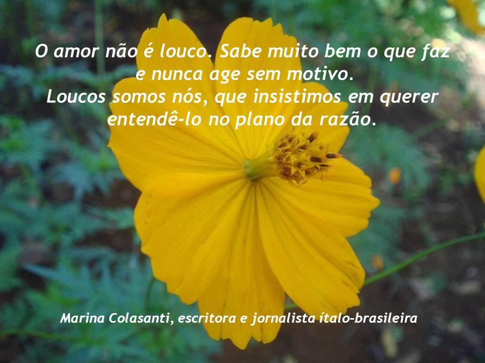 Aprendi com as primaveras a me deixar cortar para poder voltar inteira. Cecília Meirelles (1901/1964), poetisa e jornalista brasileira