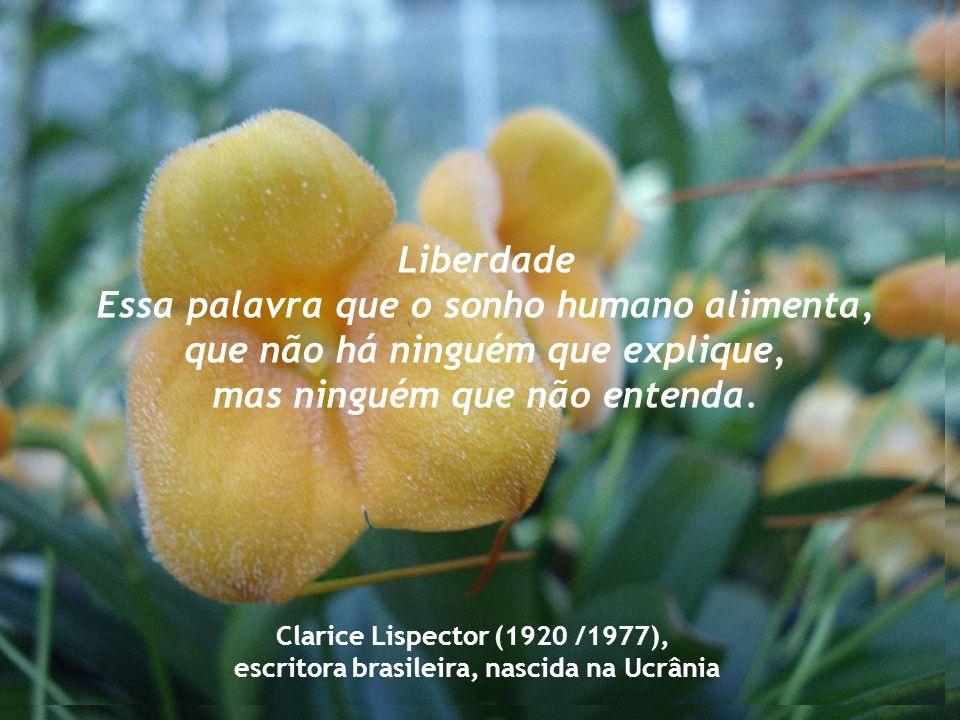 Liberdade Essa palavra que o sonho humano alimenta, que não há ninguém que explique, mas ninguém que não entenda.
