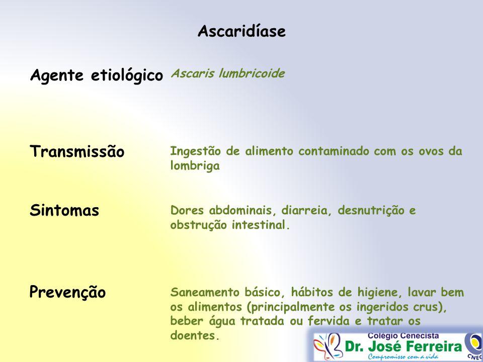 Ascaridíase Transmissão Sintomas Prevenção Agente etiológico