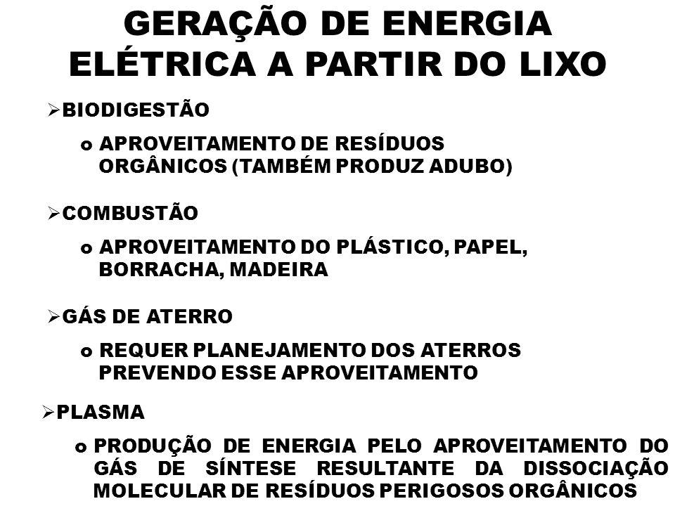 GERAÇÃO DE ENERGIA ELÉTRICA A PARTIR DO LIXO BIODIGESTÃO o APROVEITAMENTO DE RESÍDUOS ORGÂNICOS (TAMBÉM PRODUZ ADUBO) COMBUSTÃO o APROVEITAMENTO DO PL