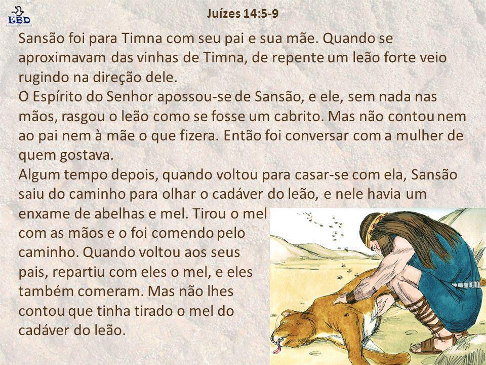 Sansão foi para Timna com seu pai e sua mãe. Quando se aproximavam das vinhas de Timna, de repente um leão forte veio rugindo na direção dele. O Espír