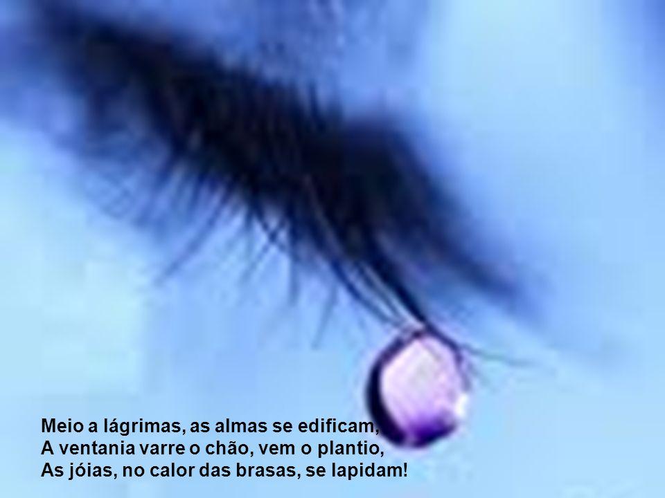 Meio a lágrimas, as almas se edificam, A ventania varre o chão, vem o plantio, As jóias, no calor das brasas, se lapidam!