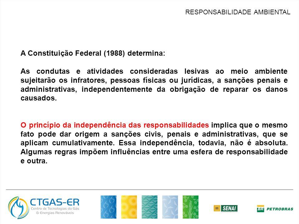RESPONSABILIDADE AMBIENTAL A Constituição Federal (1988) determina: As condutas e atividades consideradas lesivas ao meio ambiente sujeitarão os infra