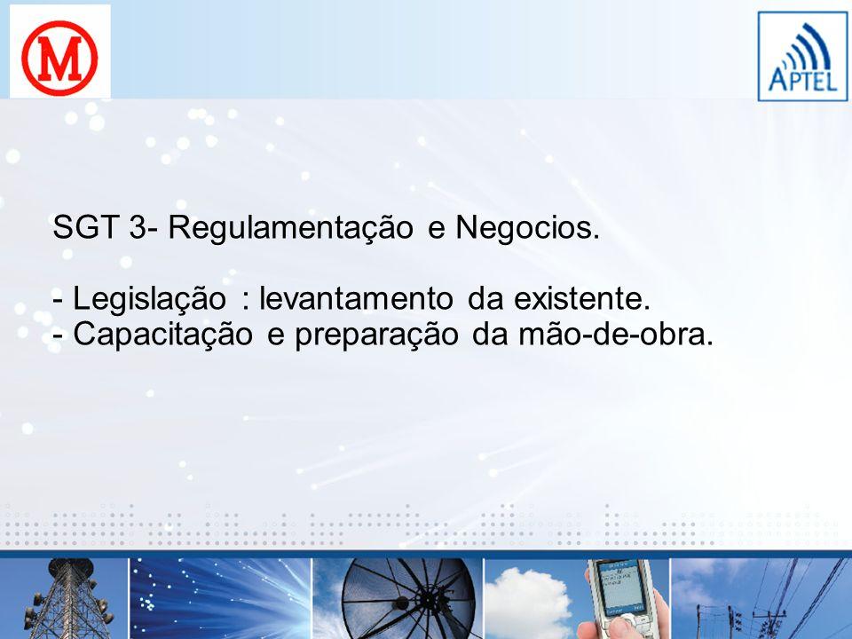 SGT 3- Regulamentação e Negocios. - Legislação : levantamento da existente. - Capacitação e preparação da mão-de-obra.