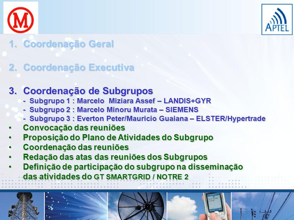 1.Coordenação Geral 2.Coordenação Executiva 3.Coordenação de Subgrupos - Subgrupo 1 : Marcelo Miziara Assef – LANDIS+GYR - Subgrupo 2 : Marcelo Minoru