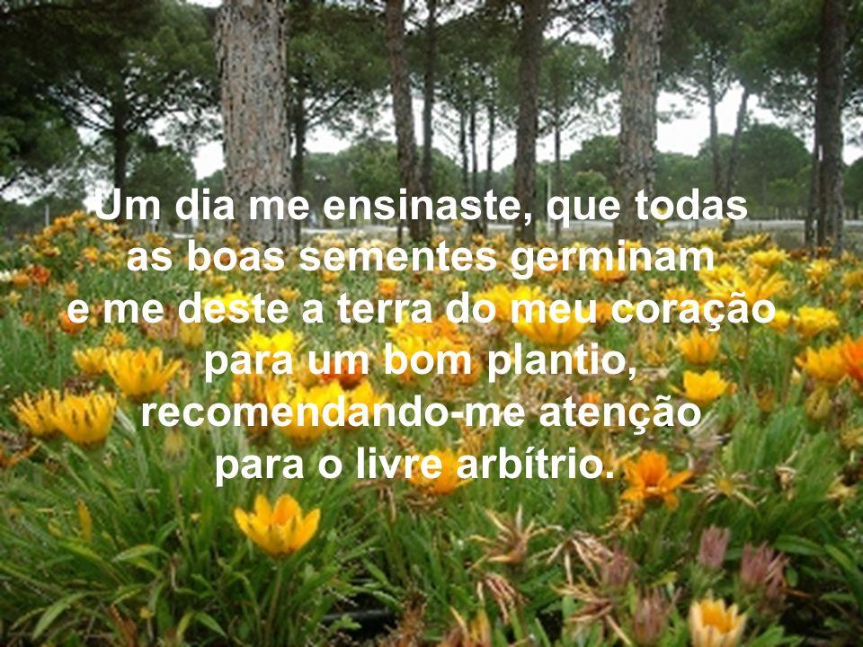 Um dia me ensinaste, que todas as boas sementes germinam e me deste a terra do meu coração para um bom plantio, recomendando-me atenção para o livre arbítrio.