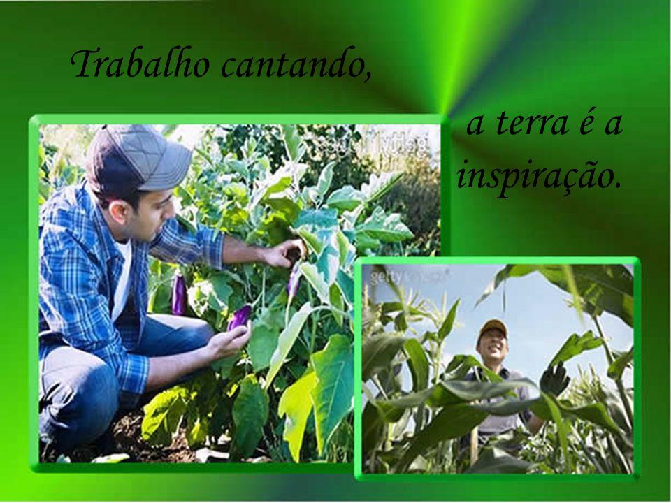 Trabalho cantando, a terra é a inspiração.