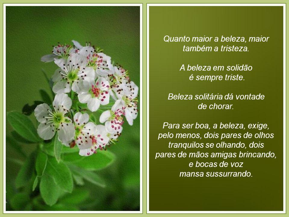 Meus sonhos.Sonho em ter tempo para curtir as montanhas e cachoeiras das Minas Gerais.