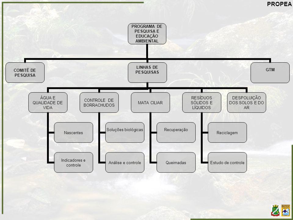 PROGRAMA DE PESQUISA E EDUCAÇÃO AMBIENTAL COMITÊ DE PESQUISA LINHAS DE PESQUISAS ÁGUA E QUALIDADE DE VIDA Nascentes Indicadores e controle CONTROLE DE