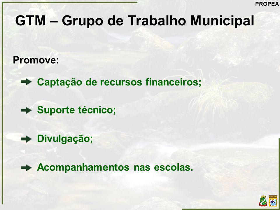 GTM – Grupo de Trabalho Municipal Promove: Captação de recursos financeiros; Suporte técnico; Acompanhamentos nas escolas. Divulgação; PROPEA
