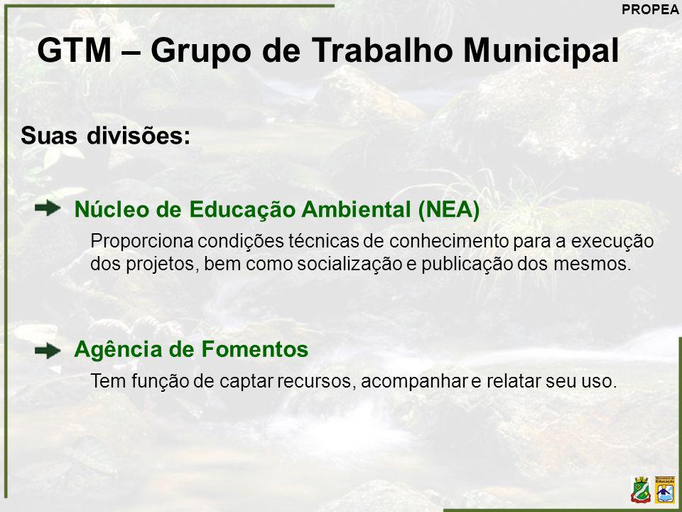 GTM – Grupo de Trabalho Municipal Suas divisões: Núcleo de Educação Ambiental (NEA) Proporciona condições técnicas de conhecimento para a execução dos