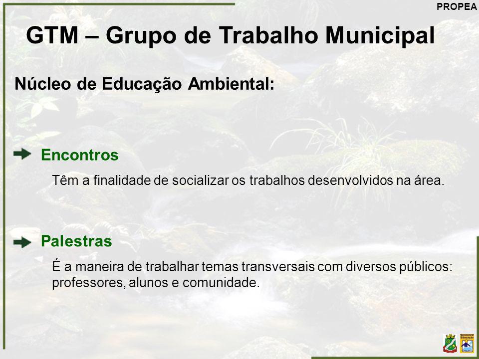 GTM – Grupo de Trabalho Municipal Núcleo de Educação Ambiental: Encontros Têm a finalidade de socializar os trabalhos desenvolvidos na área. Palestras