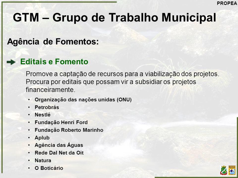 GTM – Grupo de Trabalho Municipal Agência de Fomentos: Editais e Fomento Promove a captação de recursos para a viabilização dos projetos. Procura por