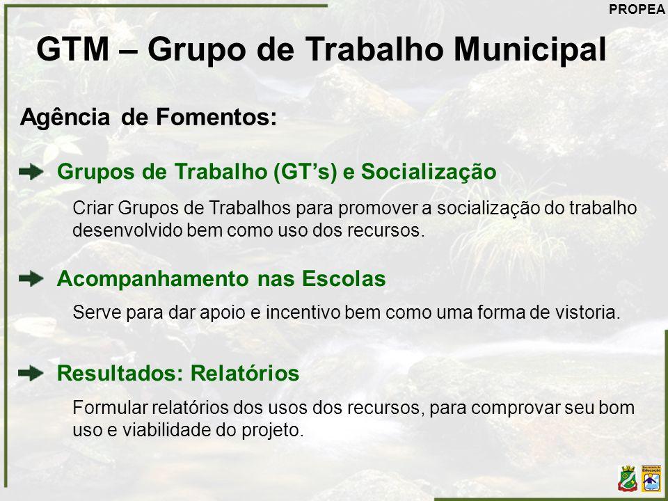 Grupos de Trabalho (GTs) e Socialização Criar Grupos de Trabalhos para promover a socialização do trabalho desenvolvido bem como uso dos recursos. GTM