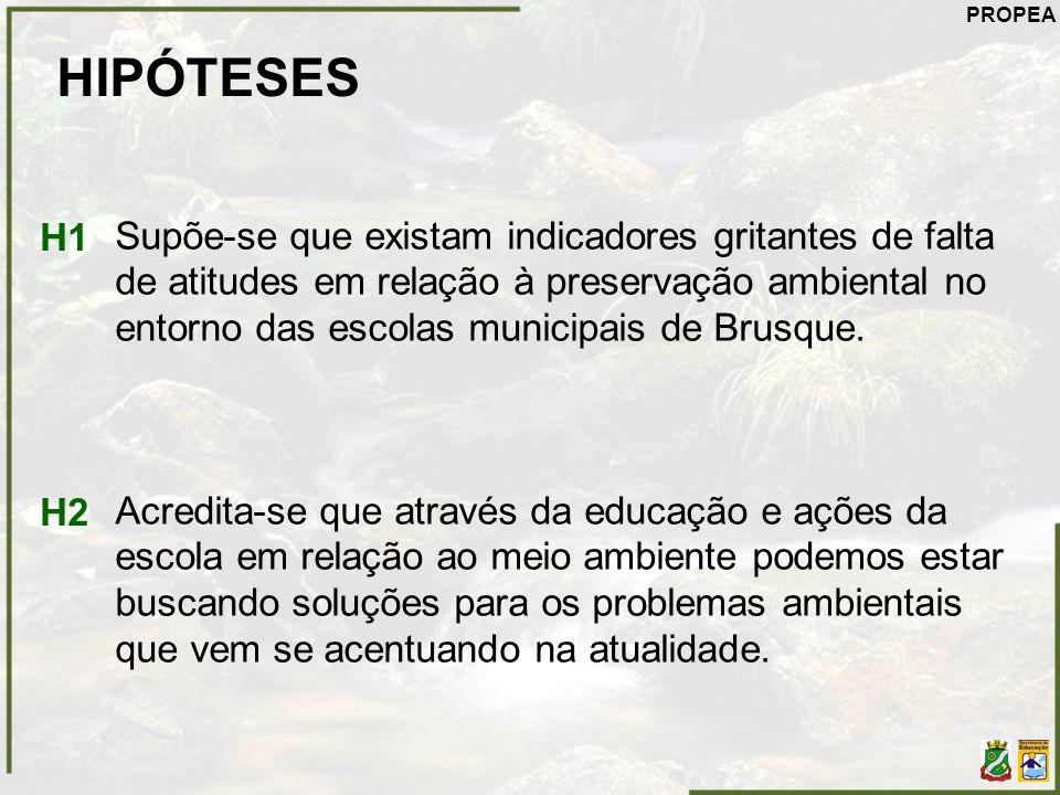 HIPÓTESES Supõe-se que existam indicadores gritantes de falta de atitudes em relação à preservação ambiental no entorno das escolas municipais de Brus
