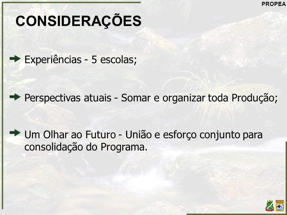 CONSIDERAÇÕES Experiências - 5 escolas; Um Olhar ao Futuro - União e esforço conjunto para consolidação do Programa. Perspectivas atuais - Somar e org