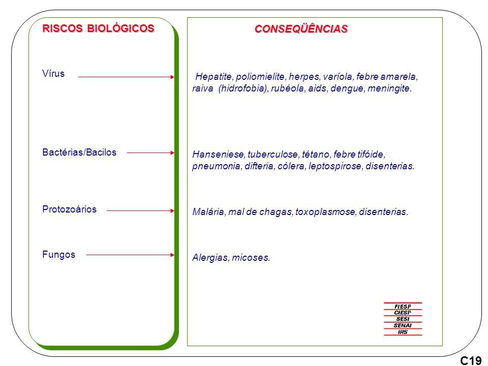 Vírus Bactérias/Bacilos Protozoários Fungos RISCOS BIOLÓGICOS CONSEQÜÊNCIAS Hepatite, poliomielite, herpes, varíola, febre amarela, raiva (hidrofobia), rubéola, aids, dengue, meningite.