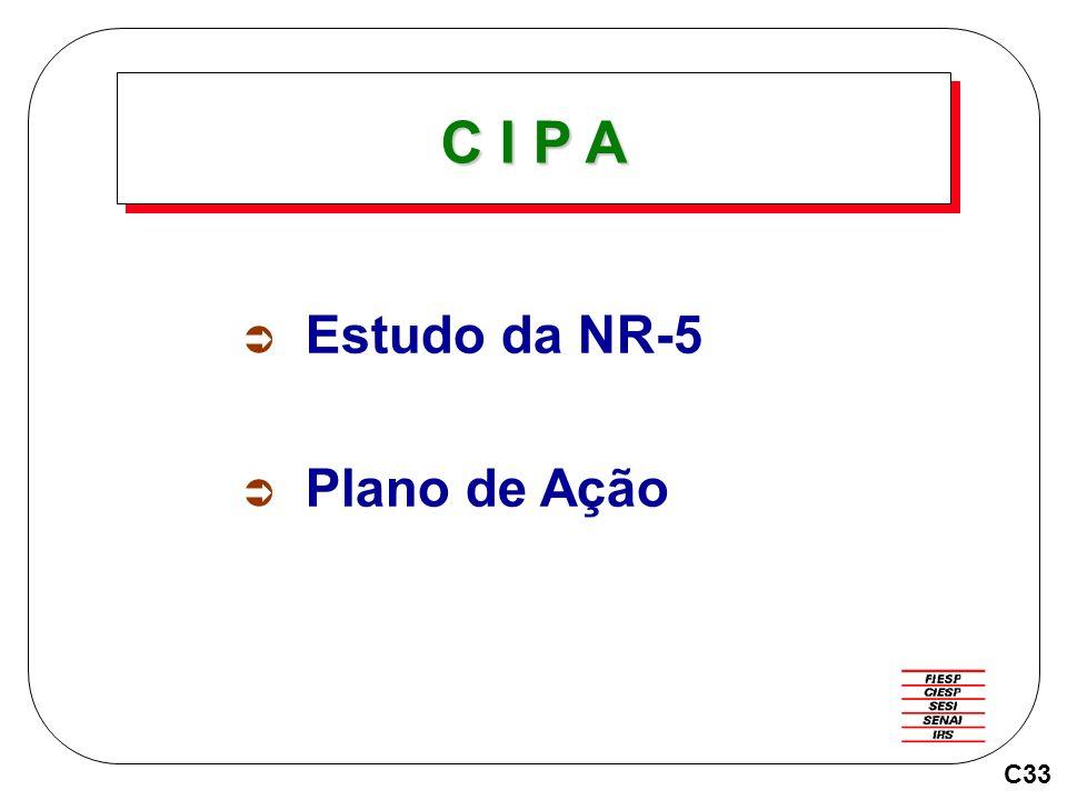 C I P A Estudo da NR-5 Plano de Ação C33