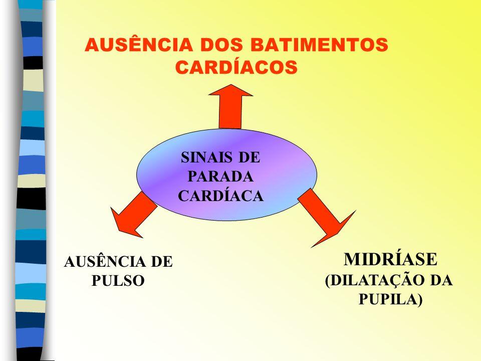 AUSÊNCIA DOS BATIMENTOS CARDÍACOS SINAIS DE PARADA CARDÍACA MIDRÍASE (DILATAÇÃO DA PUPILA) AUSÊNCIA DE PULSO