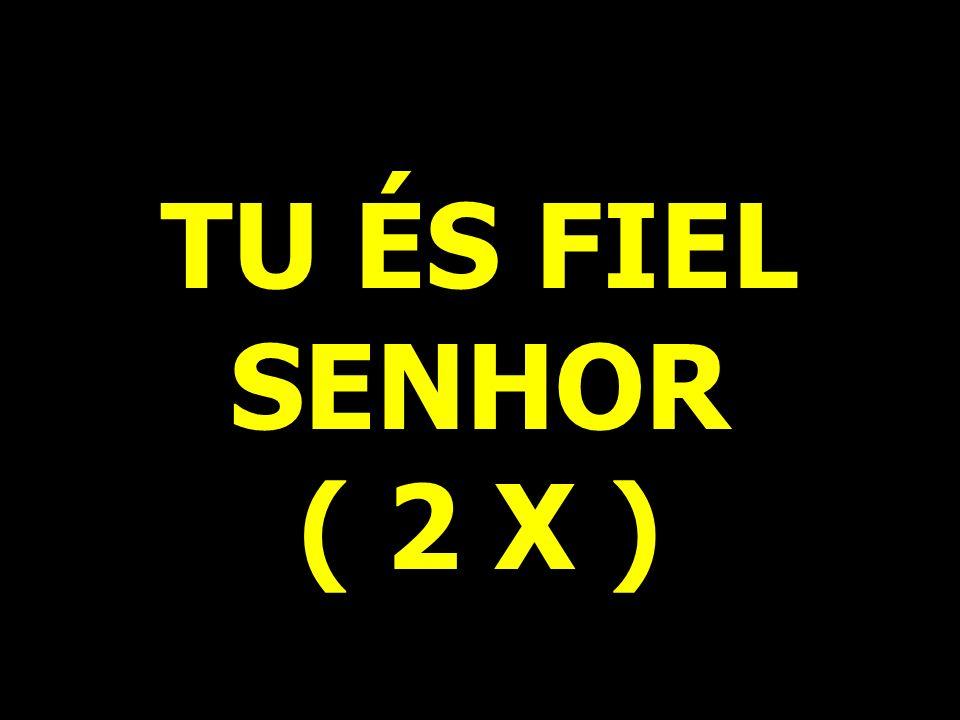 TU ÉS FIEL SENHOR ( 2 X )