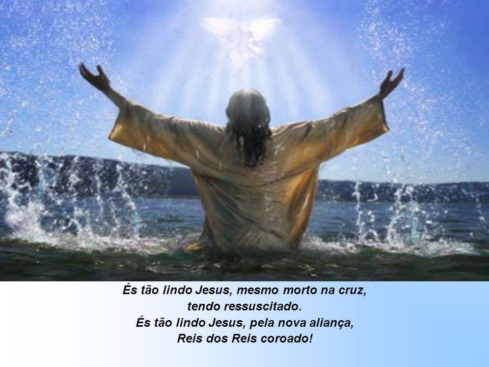 És tão lindo Jesus, pela flor e o perfume, pela noite e o dia... Pelo sol e as estrelas, o amor e a semente... És a luz que nos guia !