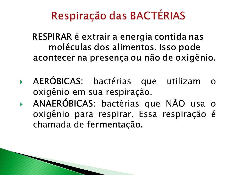 RESPIRAR é extrair a energia contida nas moléculas dos alimentos.