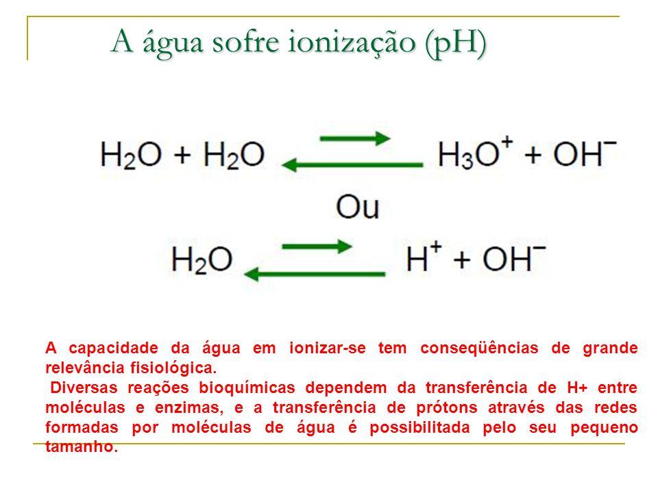 A água sofre ionização (pH) A capacidade da água em ionizar-se tem conseqüências de grande relevância fisiológica. Diversas reações bioquímicas depend