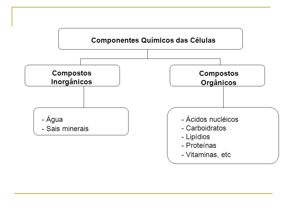 Compostos Inorgânicos Compostos Orgânicos - Água - Sais minerais - Ácidos nucléicos - Carboidratos - Lipídios - Proteínas - Vitaminas, etc Componentes