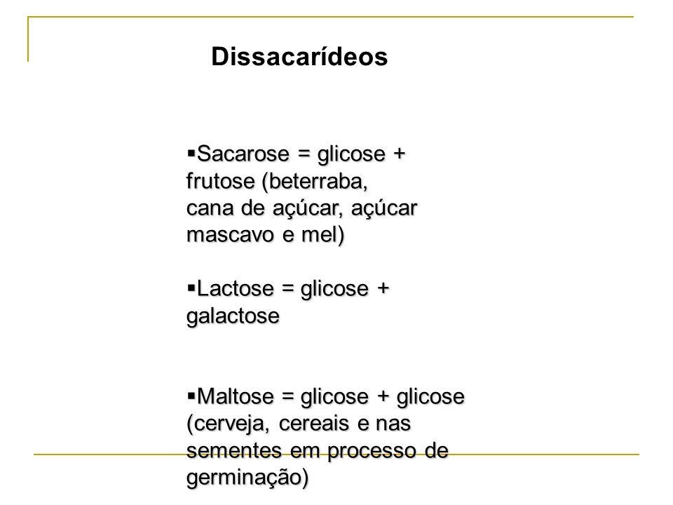 Sacarose = glicose + frutose (beterraba, Sacarose = glicose + frutose (beterraba, cana de açúcar, açúcar mascavo e mel) Lactose = glicose + galactose